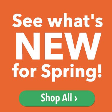 See What's New For Spring Shop All >